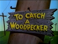 To Catch a Woodpecker