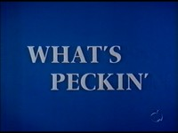 What's Peckin'