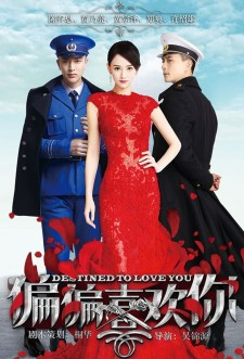 Destined to Love You saison saison 1
