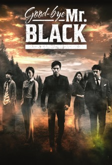 Goodbye Mr. Black saison saison 1