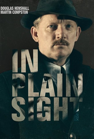 In Plain Sight (2016)