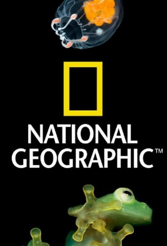 National Geographic - 100 Years