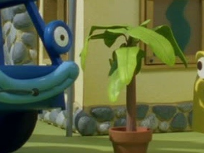 Lofty's Banana Tree