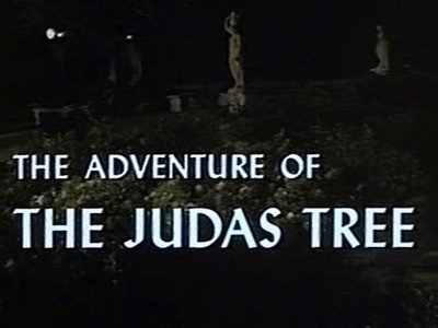 The Adventure of the Judas Tree