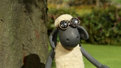 Ewe've Been Framed