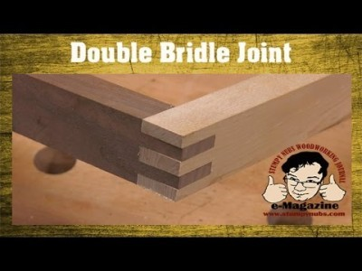 Table Saw Lesson - How to cut a double bridle joint