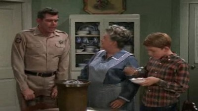 Aunt Bee's Cousin