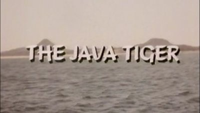 The Java Tiger